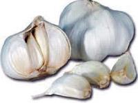 p30_Garlic.jpg